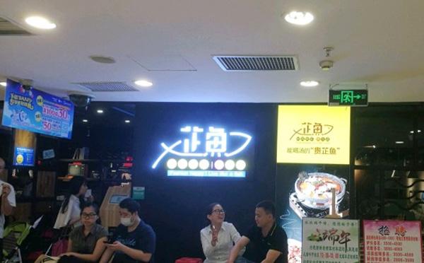 芷鱼鱼火锅加盟品牌