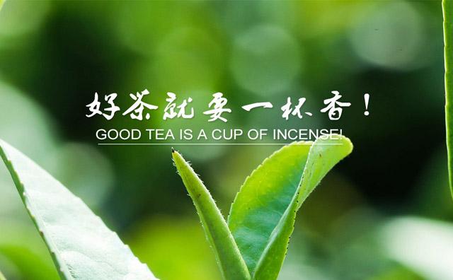 一杯香茶叶,一生只为一杯好茶