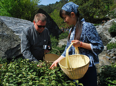 天方茶业集团茶园