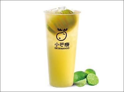 小芒鹿现萃茶加盟产品