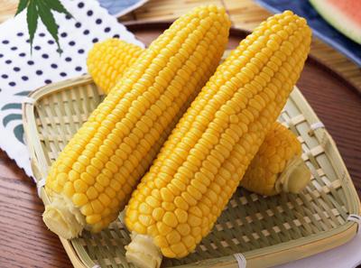 和善园加盟玉米
