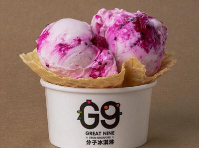 G9分子冰淇淋加盟红龙果酸奶