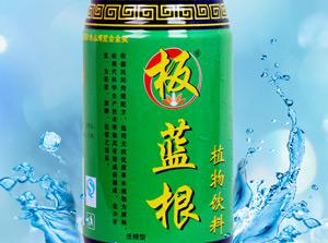 板蓝根植物饮料