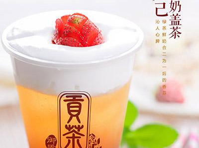 御质贡茶加盟饮品