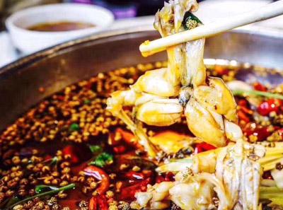 美蛙鱼头火锅加盟