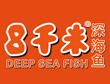八千米深海鱼加盟