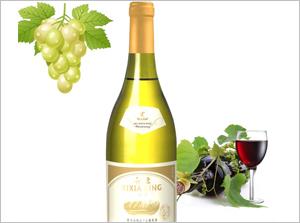 西夏王葡萄酒