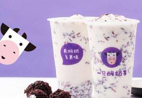 一只酸奶牛酸奶饮品