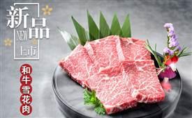 韩宫宴炭火烤肉前景怎么样