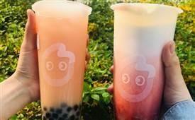 coco奶茶哪款好喝?coco奶茶价格表